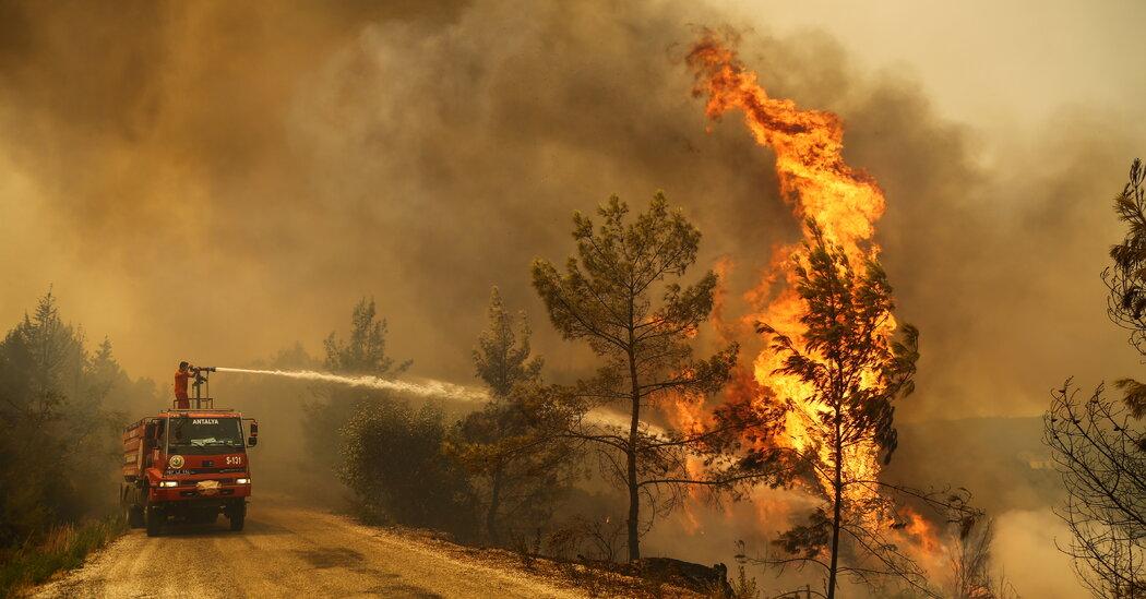 Turkey Is Next as Wildfires Afflict Mediterranean Countries